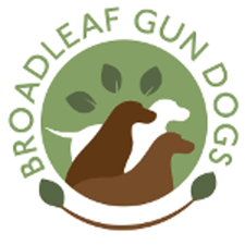 Broadleaf Gun Dogs